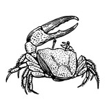 the crab stamp