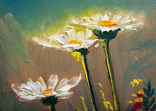 "Постер, картина, фотообои ""Oil painting Daisy flowers"""