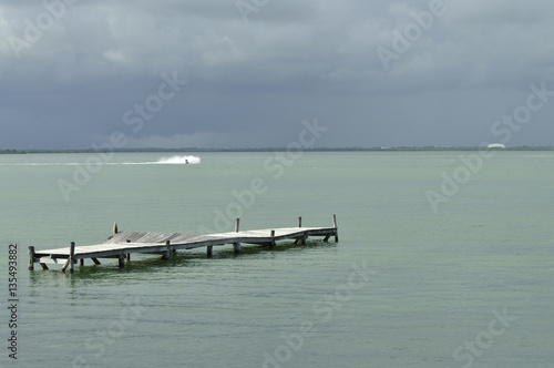 Remnants of an old pier at the lagoon in Cancun