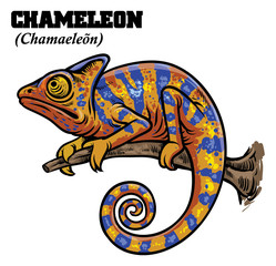 chameleon in hand drawing style