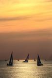 segeln warnemünde rostock ostsee regatta sonnenuntergang, segelboote