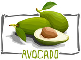 Vector simple illustration of fruit avocados.