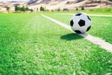 Traditional soccer ball on soccer field - 135614602