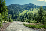 fast river in the Carpathian mountains
