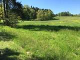 Wald, Bäume, Wiesen, Blüten im frischen grün und gelb im Mai mit blauem Himmel