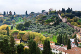 above view of gardens and wall of Giardino Bardini
