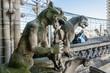 Notre Dame de Paris: Famous Stone demons gargoyle and chimera.