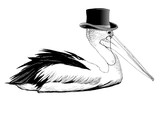 Pelican with top hat and monocle