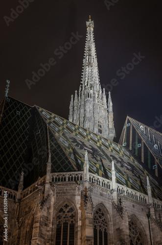 Foto op Canvas Wenen Stephansdom (St. Stephen's Cathedral) in the night, Vienna, Austria