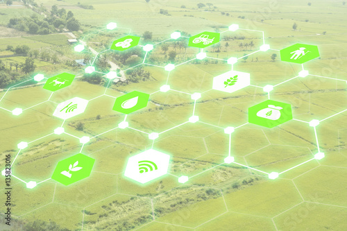 Internet of things(agriculture concept),smart farming,industrial agriculture.Farmer use augmented reality technology to control ,monitor and management in the field