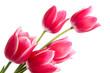 Bouquet - 135837885