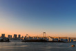 sunset on odaiba island view point with rainbow bridge - can use to display or montage on product
