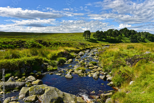 Poster Wicklow Mountains - River Liffey