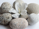 circle of meditation stones and flower - 135879880