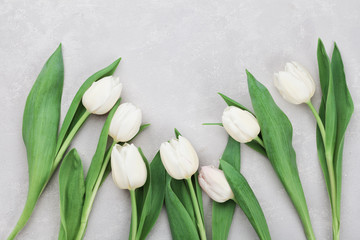 Spring tulip flowers on gray stone table top view in flat lay style. Greeting for Womens or Mothers Day.