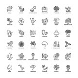 Outline icons. Flowers, plants and trees