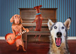 a trio of dogs singing in front of a piano good for greeting car