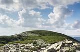 Carpathians mountains landscape