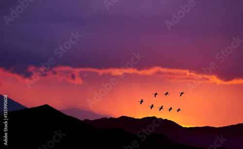 Birds flying at sunrise over the mountains
