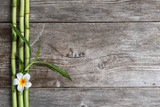 frangipani flower and bamboo on the wooden background