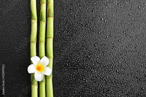 frangipani flower and bamboo on the black background