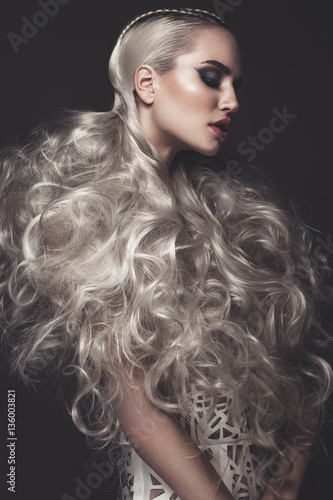 Beautiful girl in art dress with avant-garde hairstyles Poster