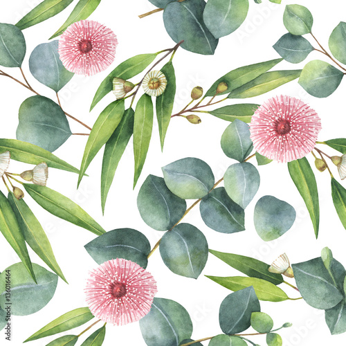 Watercolor seamless pattern with eucalyptus leaves and branches. - 136016464
