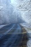 Czarna droga zimową porą w lesie