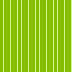 Pattern stripe seamless green two tone colors greenery concept. Vertical stripe abstract background vector.
