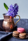 fresh hyacinth and delicious french macarons