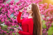 Spring touch. Happy beautiful young woman in red dress enjoy fresh pink flowers and sun light in blossom park at sunset.