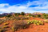 Sedona Arizona desert