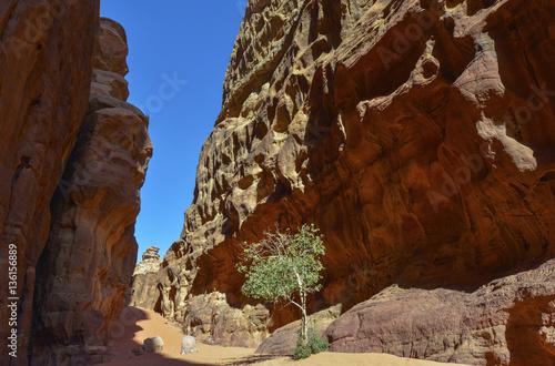 Poster Desierto de Wadi Rum, Jordania