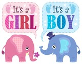 Is it a girl or boy theme 1