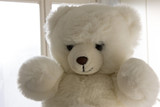 Cute white teddy bear