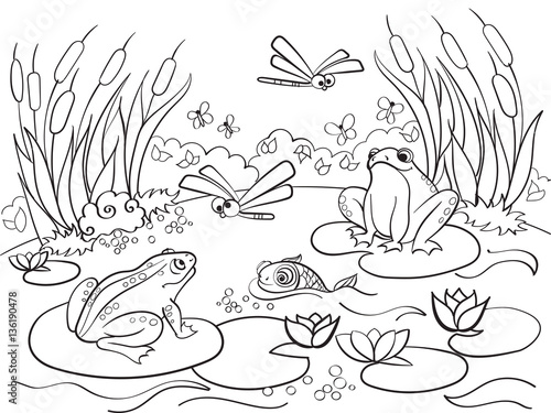 Fotobehang Zoo wetland landscape with animals coloring vector for adults
