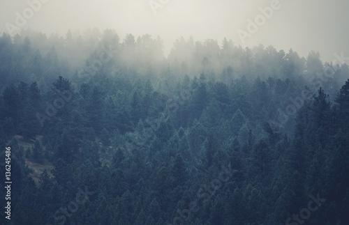 Colorado Foggy Hills - 136245486