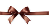 Brown satin bow