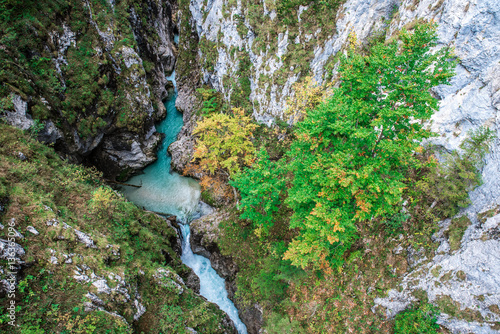 Keuken foto achterwand Olijf Leutaschklamm - wild gorge with river in the alps of Germany