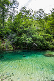 Crystal clear lake in the woods. Plitvice, National Park, Croati