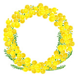 Wreath of yellow acacia flowers twigs - 136395623