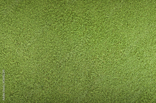 Green Artificial Grass Poster
