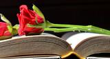 Rose rosse - libro - 136427208