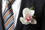 Fototapety Cymbidium orchid boutonniere on black suit of the groom