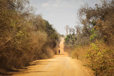 Traditional road in Madagascar with man walking on the road and