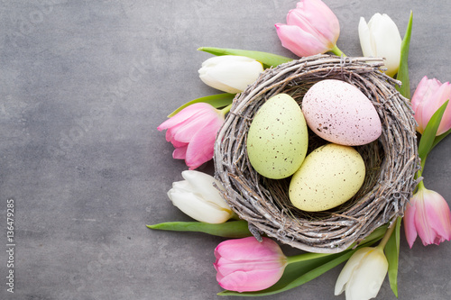 Spring greeting card. Easter eggs in the nest. Spring flowers tu