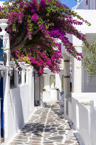 Foto op Aluminium Santorini Colourful Mykonos