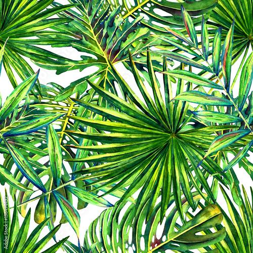 liscie-tropikalnej-palmy
