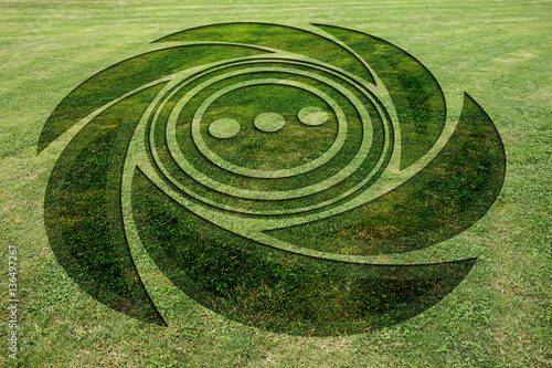 Foto op Canvas UFO Concentric spiral circles fake crop circle meadow