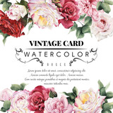 Greeting card with roses, watercolor, can be used as invitation - 136610495